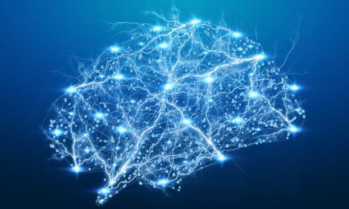 Digital x-ray human brain on blue background 3D rendering